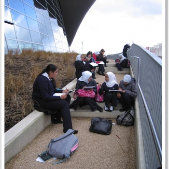 Year 8 Art Olympic Park Trip 6